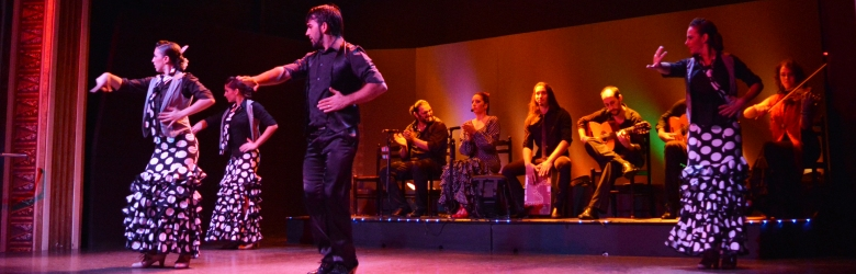 Palacio del Flamenco Show with optional Tapas Menu